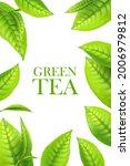 green tea leaves  organic... | Shutterstock .eps vector #2006979812