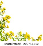 yellow flowers floral frame ... | Shutterstock . vector #200711612