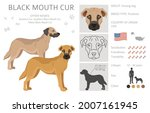 black mouth cur clipart.... | Shutterstock .eps vector #2007161945