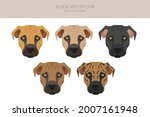 black mouth cur clipart.... | Shutterstock .eps vector #2007161948