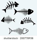 Fish Skeleton. Image Isolated...