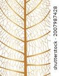 leaf texture. leaf background... | Shutterstock .eps vector #2007987428