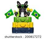Dog On Holidays With  Brazilia...