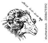 illustration ink aries... | Shutterstock .eps vector #2008675592