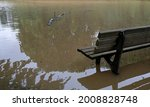 Extreme Weather   Bench In A...