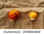 Orange Caesar Mushrooms After...