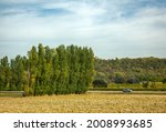 Fields In The Foothills Of The...