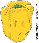 vector illustration of...   Shutterstock .eps vector #2009034275