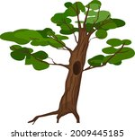 cartoon oak tree with hollow... | Shutterstock .eps vector #2009445185