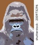 Closeup Portrait Of A Gorilla...