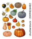 poster pumpkin. vector food...   Shutterstock .eps vector #2009826482