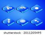 set solstice  leo zodiac ... | Shutterstock .eps vector #2011205495