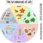 information poster of six... | Shutterstock .eps vector #2011431038