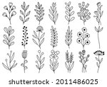 collection forest fern... | Shutterstock .eps vector #2011486025