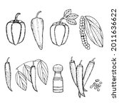 set of peppers  paprika  ramiro ...   Shutterstock .eps vector #2011636622