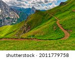 landscape with grass and... | Shutterstock . vector #2011779758