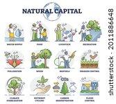 natural capital as...   Shutterstock .eps vector #2011886648