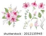 set of hibiscus watercolor...   Shutterstock .eps vector #2012135945