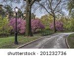 Spring In Central Park In...