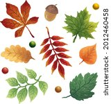 a set of illustrations with...   Shutterstock .eps vector #2012460458