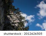 High Rockface With Trees And...
