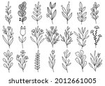 collection forest fern... | Shutterstock .eps vector #2012661005