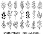 collection forest fern... | Shutterstock .eps vector #2012661008