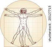 the vitruvian man. detailed... | Shutterstock .eps vector #20127715