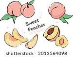 peaches that we enjoy in hot...   Shutterstock .eps vector #2013564098