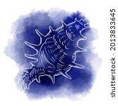 Hand Drawn Vector Of Seashell...