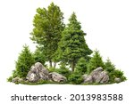 Cutout Rock Surrounded By Fir...