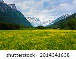 Bucolic Flowered Meadow Between ...
