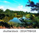 lake. fir trees and blue sky...   Shutterstock . vector #2014798418