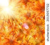 autumn orange and red fallen... | Shutterstock .eps vector #2015057732