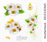 3d realistic vector chamomile... | Shutterstock .eps vector #2015132465