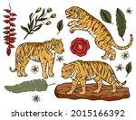tiger cartoon tropical vector...   Shutterstock .eps vector #2015166392