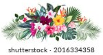 exotic tropical flowers  orchid ... | Shutterstock .eps vector #2016334358