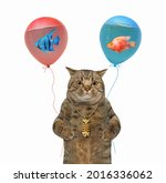 A Beige Cat Holds Balloons With ...