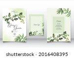 beautiful maidenhair fern... | Shutterstock .eps vector #2016408395
