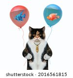 A Colored Cat Holds Balloons...