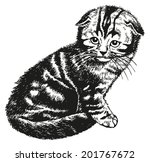 fold kitten   hand drawn vector ... | Shutterstock .eps vector #201767672