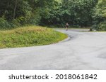 woman running in the woods....   Shutterstock . vector #2018061842