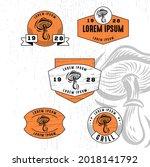 set of vintage badge logo icon...   Shutterstock .eps vector #2018141792