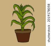 aloe potted plant. vector stock ... | Shutterstock .eps vector #2019178058