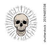 anatomic skull vector art.... | Shutterstock .eps vector #2019685538