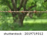 Old Rusty Barbed Wire Fence ...