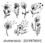 set of dandelion silhouettes.... | Shutterstock .eps vector #2019878042