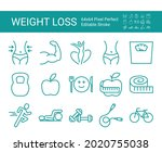 set of line icons of weight... | Shutterstock .eps vector #2020755038