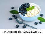 cottage cheese and blueberries...   Shutterstock . vector #2022122672