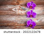 three orchid flowers on a...   Shutterstock . vector #2022122678
